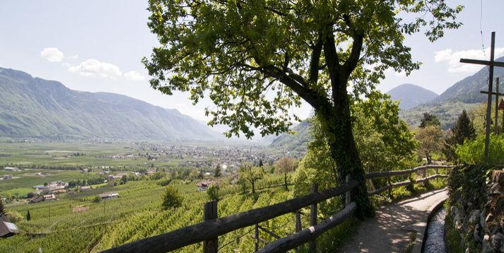 Quadfreunde Harz und Quad Team Tirol: Bei ihrem ersten sommerlichen ...